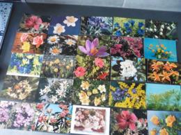 LOT  DE  220  CARTES  POSTALES   DE  FLEURS - Cartes Postales