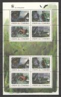 B001 2009 UNION DES COMORES WWF FAUNA WILD ANIMALS BATS !!! MICHEL 14 EURO !!! 1KB MNH - Sonstige