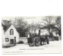 Reilhac - Un Attelage Dans Le Causse - Dos SIMPLE - France