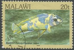 Malawi 1984 FIsh. 20t Used. SG 695 - Malawi (1964-...)