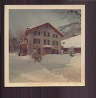 """Photo ( 9 X 9 Cm ) """" La Printanière Sous La Neige """" Suisse ?? 1970 - Lieux"""