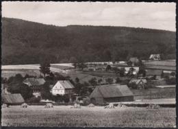 D-31848 Bad Münder - Ortsteil Nienstedt Im Deister - Hameln (Pyrmont)