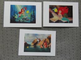 3 Cartes Postales Disney La Petite Sirène - Disney