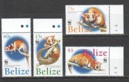B016 BELIZE FAUNA WWF WILD ANIMALS OPOSSUM #1285-88 SET MNH - W.W.F.
