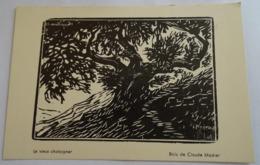 Cp - Bois De Claude Madier - Le Vieux Chataigner - Pintura & Cuadros