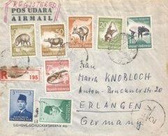 Indonesia 1960 Djakarta Rhino Porc Ape Monkey Lizard Currency Control Censor Registered Cover - Indonesien