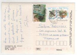 """Beaux  Timbres """" Oiseaux """"  Sur Carte Du 24/08/1996 - Brazilië"""