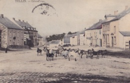 Tellin Grand'Rue Circulée En 1909 - Tellin