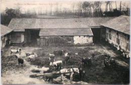 WEVELGEM Ferme De Mecricourt 1910 Hoeve Boerderij Intérieur De La Cour Anime - Wevelghem - Wevelgem
