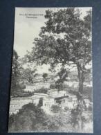 20005) PARMA SALSOMAGGIORE PANORAMA NON VIAGGIATA 1924 CIRCA - Parma