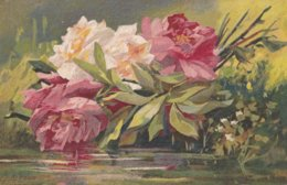 Pivoines Peintre Inconnu - Flowers