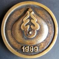 Medaille SCHERING-PLOUGH LOSEC Omeprazol  1989 - Profesionales/De Sociedad