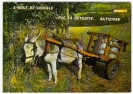 MULO - ASINO - A BOUT DE SOUFFLE... VIVE LE RETRAITE... ANTICIPEE - 1988 - Vedi Retro - Agricoltura