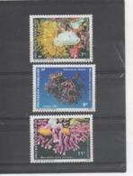 POLYNESIE Française - Monde Sous-marin : Nudibranche (Doridien), Algue (Galaxaura Tenera), Porcelaine (Adusta Cumingii) - Polynésie Française