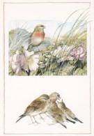 195564Marjolein Bastin. Vogels Wekerom. - Illustrateurs & Photographes