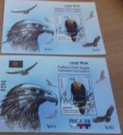 BANGLADESH, 2018, MNH, BIRDS, FISH EAGLES,S/SHEET +PRAGUE OVPT.  S/SHEET - Eagles & Birds Of Prey