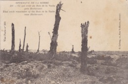 80  HERBECOURT. GUERRE 14-18 .OFFENSIVE  DE LA SOMME. CE QUI RESTE DU BOIS DE LA VACHE - Guerre 1914-18