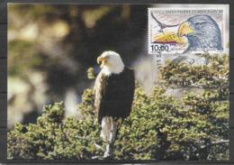 1998 ST PIERRE MIQUELON PA 78 Aigle Carte Maximum - St.Pierre Et Miquelon