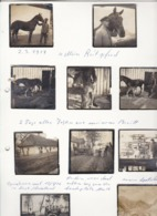 18 Fotos 1. WK - Deutsche Soldaten - Russland - Rumänien - Pferde - Operationssaal - Unterstand (44201) - Krieg, Militär