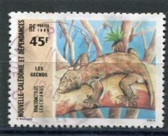 NOUVELLE CALEDONIE  N°  517  (Y&T)  (Oblitéré) - Neukaledonien