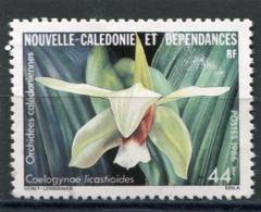 NOUVELLE CALEDONIE  N°  520  (Y&T)  (Oblitéré) - Neukaledonien