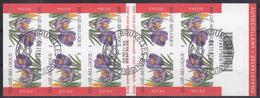 BELGIQUE 2002 Nº C-3135A USADO 1º DIA - Postzegelboekjes 1953-....