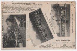 CPA 80 MARTAINNEVILLE ONICOURT Ruchers De L'Abbé Emile WARRE Apiculteur Miel Tarifs Abeilles - Francia