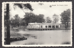 103980/ HERSELT, De Purpere Heide - Herselt
