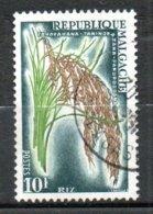 MADAGASCAR Riz 1960 N°350 - Madagaskar (1960-...)