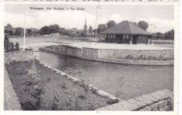 Waregem, Het Stadion (pk61650) - Waregem