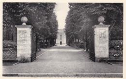 Waregem, American Cemetery (pk61657) - Waregem