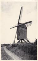 Waregem, Oude Molen, Windmill, Moulin (pk61658) - Waregem