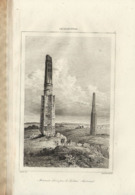 AFGHANISTAN MINARETS ELEVES PAR LE SULTAN MAHMUD 1835 INCISIONE DI LEMAITRE - Prints & Engravings