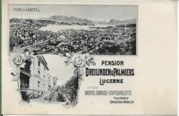 Pension Dreilinden Et Palmiers LUCERNE - LU Lucerne