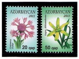 Azerbaijan 2011 . Definitives. Flowers. 2v: 20, 50     Michel # 835-36 - Azerbaiján