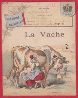Protége Cahier Ancien Fin XIXéme Collection  Histoire Naturelle  La VACHE - Protège-cahiers