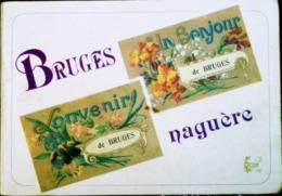 LIVRE * BRUGES NAGUERE * (Gironde) < HISTORIQUE  Et  RECUEIL DE CARTES POSTALES + PHOTOS - Boeken