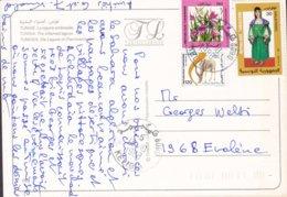 Tunisia PPC La Lagune Embrasée Inflamed Lagoon KALIBIA 1988 Volkstracht Mendesantilope & Blumen Stamps - Tunisia (1956-...)
