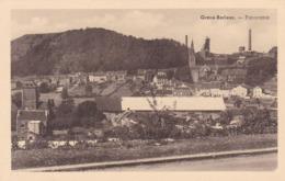 Grace Berleur, Panorama (pk61702) - Grace-Hollogne