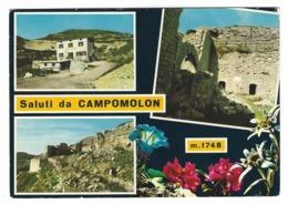 1043 SALUTI DA CAMPOMOLON 3 VEDUTE VICENZA 1970 CIRCA - Vicenza