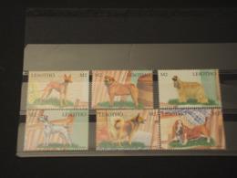 LESOTHO - 1999 CANI  6  VALORI - NUOVI(++) - Lesotho (1966-...)