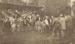 RPPC MIDSOMER NORTON HISTORIA SOCIAL - Inglaterra