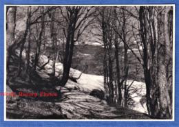 Photo Ancienne - Le Lac PAVIN ( Puy De Dôme ) - Aspect En Hiver - 1955 - Besse-et-Saint-Anastaise - Lieux