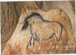 Préhistoire, Grotte Chauvet,  Ardèche,peintures Rupestres, Petit Cheval ,caverne Pont D'Arc, Aurignacien - Archaeology