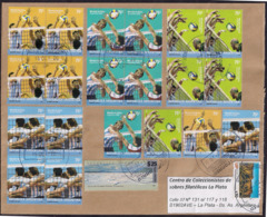 Argentina - 2019 - Lettre - Timbres Volleyball - Divers Timbres - Argentine