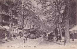 L'Avenue Malausseua, Nice (Alpes Maritimes), France, 1900-1910s - Nice