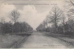 CPA 78 Yvelines - NEAUPHLE Le Château - Avenue Du Châtron - Neauphle Le Chateau
