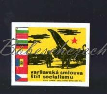 L2-196 CZECHOSLOVAKIA 1972 Propaganda Warsaw Pact Military Alliance Flags Members - Army - Military Aircraf MiIG-21 - Luciferdozen - Etiketten