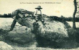 86D14 - LA TRIMOUILLE - Dolmen - La Pierre Soupèze - La Trimouille