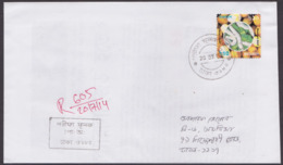 Bangladesh 2000 Insect -Bombyx Mori Solo Used On Cover Inland Registered Mail Pmk 2014 - Bangladesh